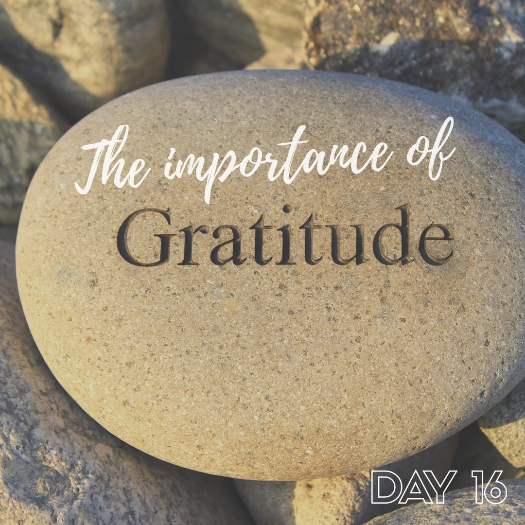 30 Days of Facebook Live // The Importance of Gratitude
